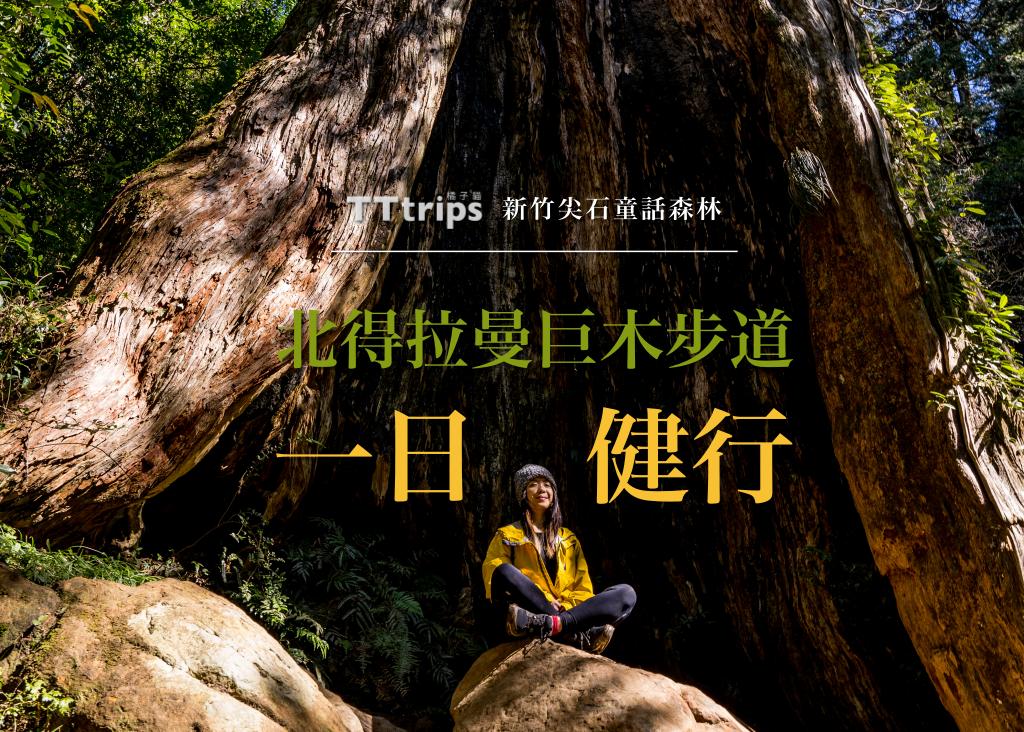 新竹尖石童話森林・北得拉曼巨木步道一日健行